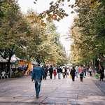 Уеб камери в населените места в България